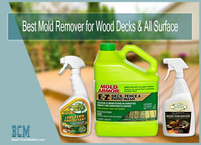 Best Mold Remover for Wood